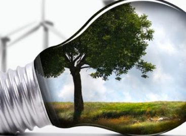 Become More Energy Efficient With These Simple Strategies